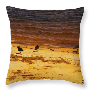 Throw Pillow featuring the photograph Riverbank Birds by Cassandra Buckley