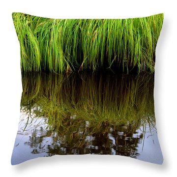 Riverbank Wild Grass Throw Pillow