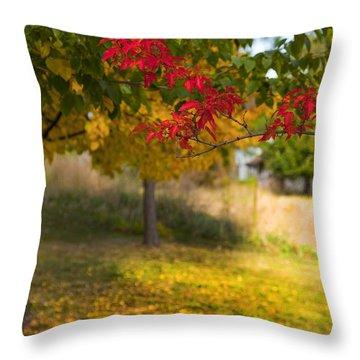 Riverbend Orchard Throw Pillow by Theresa Tahara