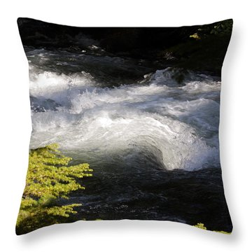 River's Ebb Throw Pillow