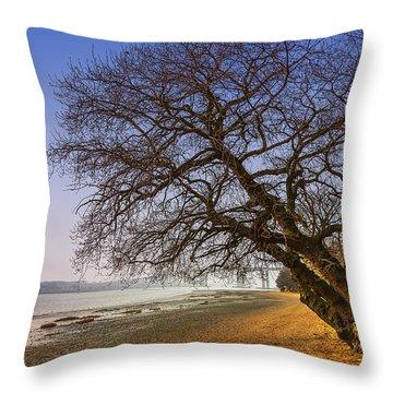 Riverside Throw Pillow by Svetlana Sewell