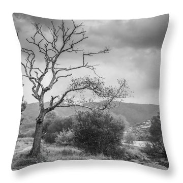 Throw Pillow featuring the photograph Riverside Tree by Gary Gillette