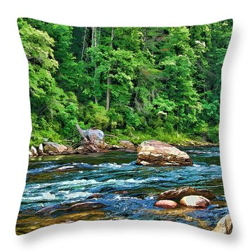 Riverview Throw Pillow by Kenny Francis