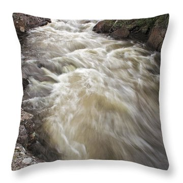 Riviere Du Diable Throw Pillow