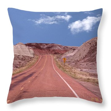 Road Curves Throw Pillow