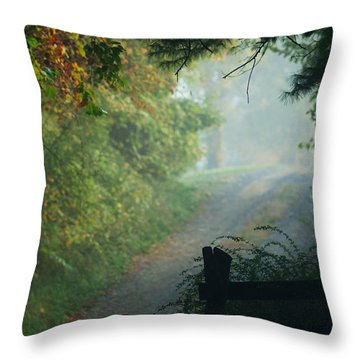 Road Goes On Throw Pillow by Michael McGowan
