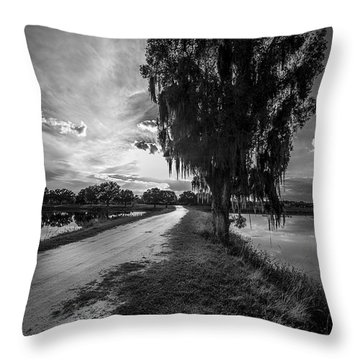 Road Into The Light-bw Throw Pillow