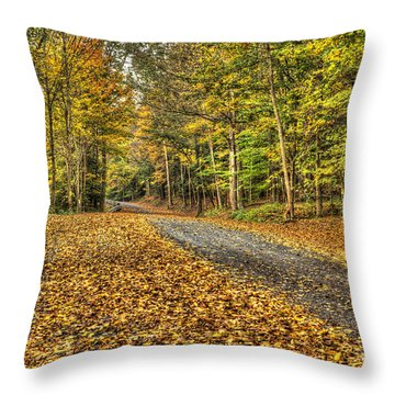 Road Into Woods Throw Pillow