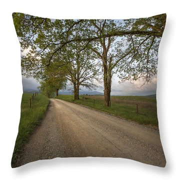 Road Not Traveled II Throw Pillow