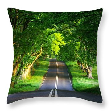 Throw Pillow featuring the digital art Road Pictures by Marvin Blaine