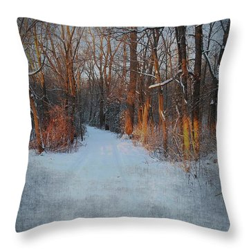Road Through The Woods Throw Pillow