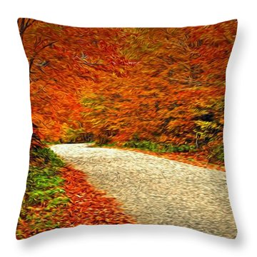 Road To Nowhere Throw Pillow by Bill Howard