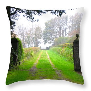 Road To Nowhere Throw Pillow by Suzanne Oesterling