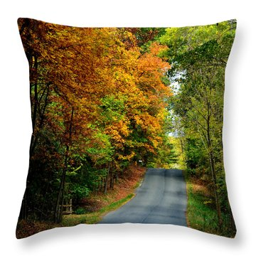 Road To Riches Throw Pillow by Carlee Ojeda