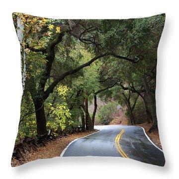 Throw Pillow featuring the photograph Road To Santiago Canyon by Viktor Savchenko