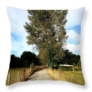 Road To Santiago Throw Pillow