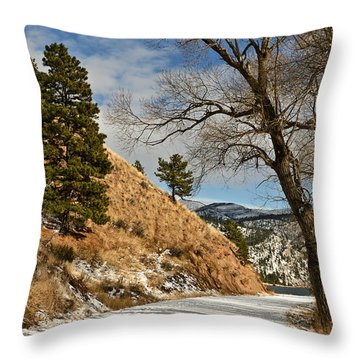 Road To The Lake Throw Pillow by Sue Smith