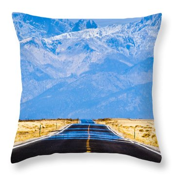 Sunshine Throw Pillows