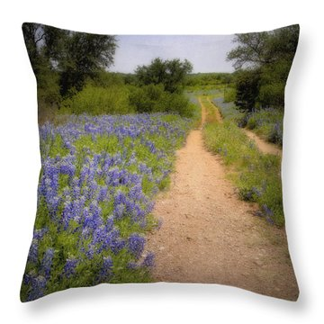Road To The North Forty Throw Pillow by David and Carol Kelly