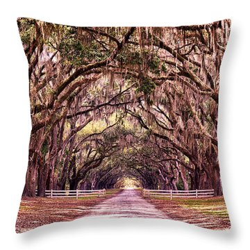 Road To The South Throw Pillow