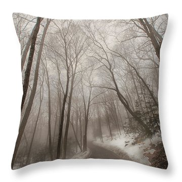 Road To Winter Throw Pillow by Karol Livote