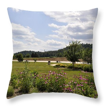 Throw Pillow featuring the photograph Road Trip 2012 #2 by Verana Stark