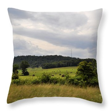 Throw Pillow featuring the photograph Road Trip 2012 by Verana Stark
