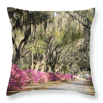 Road With Azaleas And Live Oaks Throw Pillow