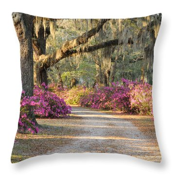 Road With Live Oaks And Azaleas Throw Pillow