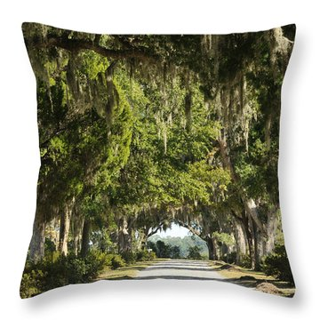 Throw Pillow featuring the photograph Road With Live Oaks by Bradford Martin
