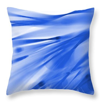 Roadhouse Blues Throw Pillow