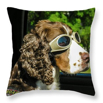 Roadie Throw Pillow by Betty Denise