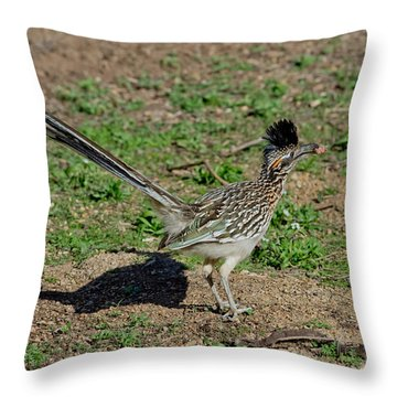 Roadrunner Male With Food Throw Pillow