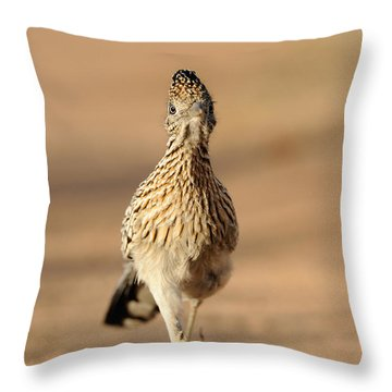 Roadrunner Running Throw Pillow