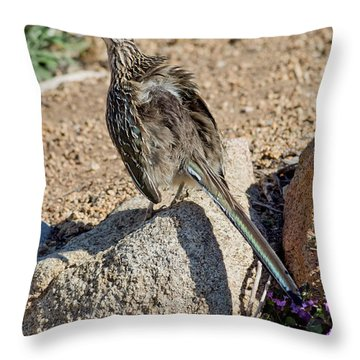 Roadrunner Sunning Atop Rock Throw Pillow