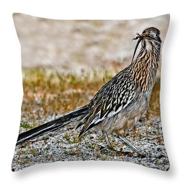 Roadrunner With Lizard Throw Pillow
