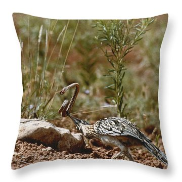 Roadrunner With Snake Throw Pillow
