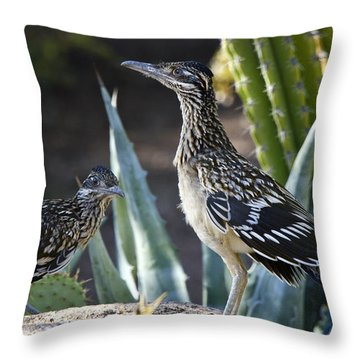 Roadrunners At Play  Throw Pillow
