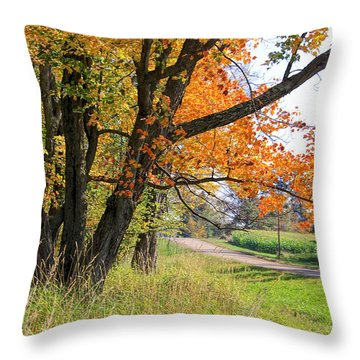 Roadside Beauty Throw Pillow