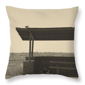 Roadside Rest Throw Pillow