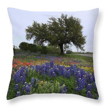 Roadside Splendor Throw Pillow