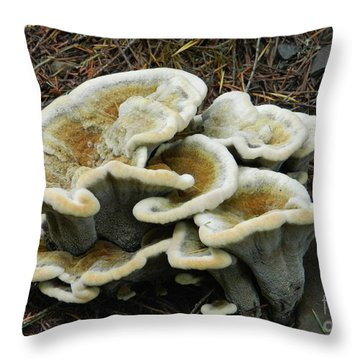 Throw Pillow featuring the photograph Roadside Treasure by Chalet Roome-Rigdon