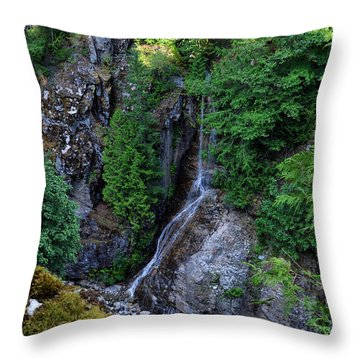Roadside Waterfall Throw Pillow by Rebecca Parker