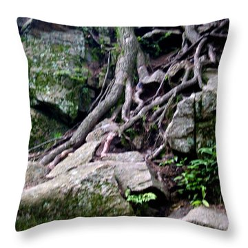 Roaming Tree Roots Throw Pillow