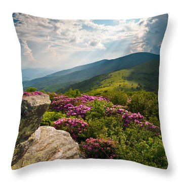 Tn Throw Pillows