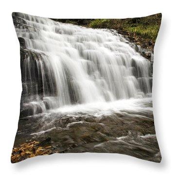 Roaring Falls Salt Springs Throw Pillow by Christina Rollo