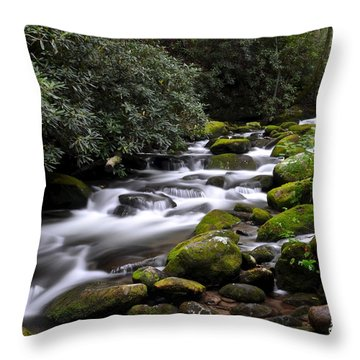 Roaring Fork Throw Pillow by Frozen in Time Fine Art Photography