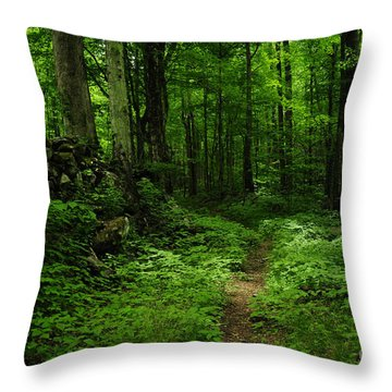 Throw Pillow featuring the photograph Roaring Fork Trail by Debbie Green