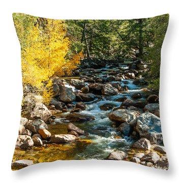 Roaring River 1-7782 Throw Pillow