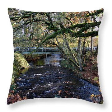 Roaring River Throw Pillow by Erica Hanel